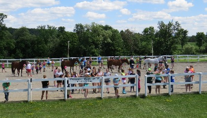 people and horses in a show ring