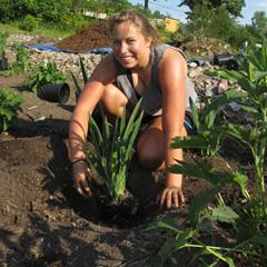 Alex Marcucci planting a rain garden