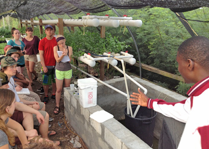 UVM students learn about a hydroponics system from Trenton Durant, agricultural sciences teacher at South Andros High School in the Bahamas.