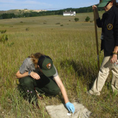 Bonnie Ricord (left) working in the field at Sleeping Bear Dunes