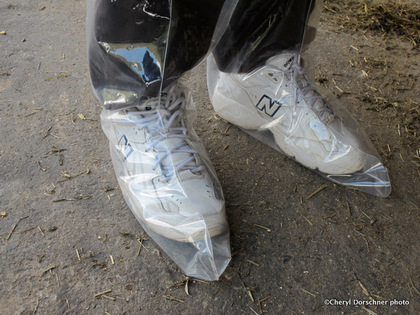 plastic covered shoe protectors