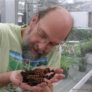Josef Gorres studying handful of worms