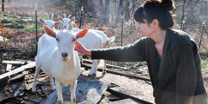 Katrina Light with goats
