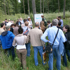 "Participants tour a demonstration of ""close-to-nature"" silviculture in lowland oak forest of Transcarpathia, Ukraine."