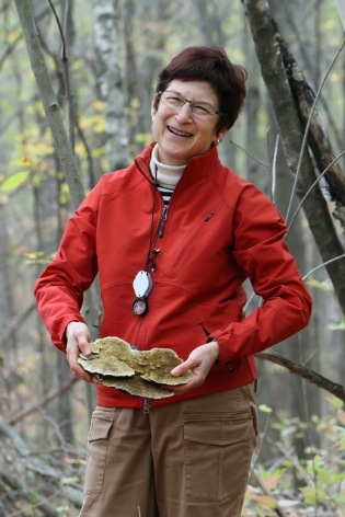 scientist in the field holding shelf mushroom