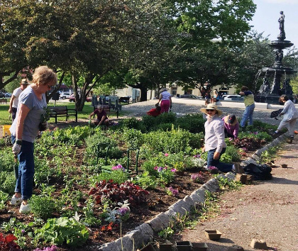 Master Gardeners in Taylor Park, St. Albans
