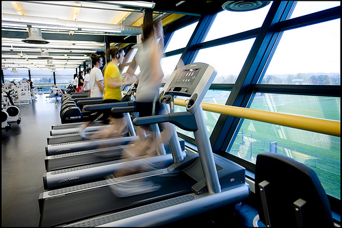 runners on treadmills