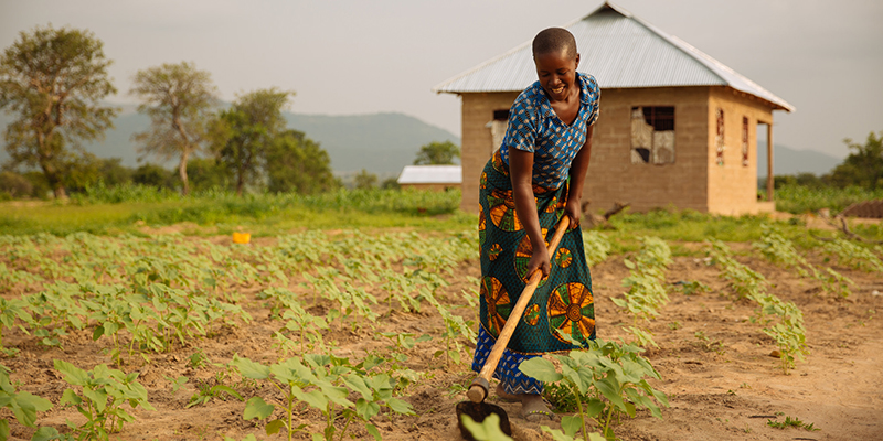 Woman at smallholder farm in East Africa.