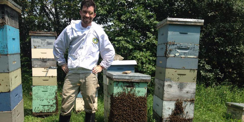 bees wild bees pollination pollinators Vermont beekeepers apiary Taylor Ricketts Leif Richardson Alison Broday Samantha Alger Gund Institute