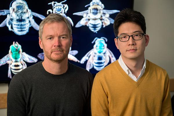 gung researchers
