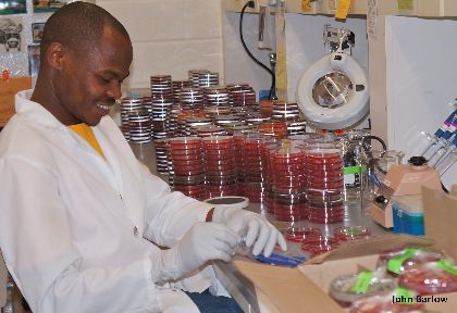 Man in lab with 1,500 petri dishes.