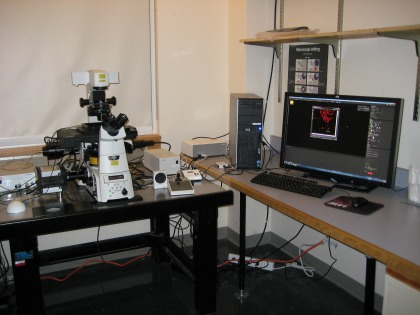 STORM Lab at the UVM College of Medicine's Microscopy Imaging Center (MIC)