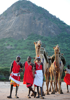 Staff of Karisia Walking Safaris with pack camels