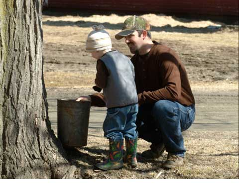 young boy and father gathering maple sap from a bucket