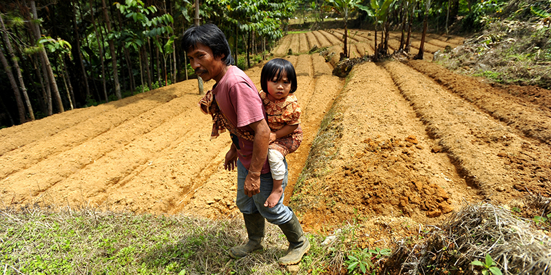 A father carries a child on his back, standing in a field