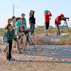 RSENR students birding in Texas during Spring Break.