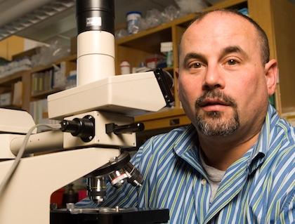 Daniel Weiss, M.D., Ph.D.
