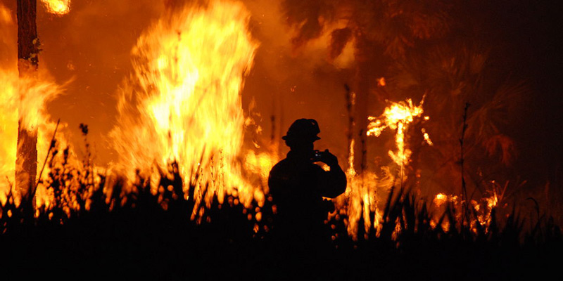 A firefighter surveys a forest fire at night.