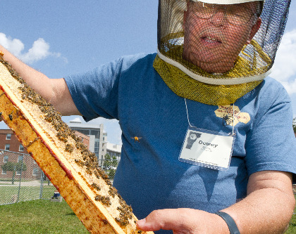 Dewey Caron with bees