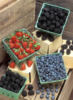 Pints of ripe blackberries, strawberries and blueberries