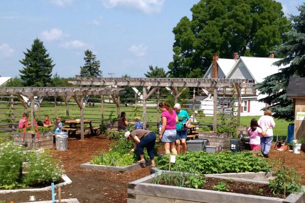 master gardener crops for kids program in barre vermont