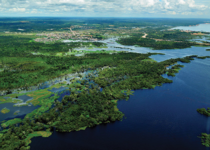 Wetlands on Brazil's coastline