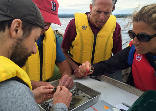 teachers evaluate zebra mussels