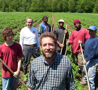 farm crew in field