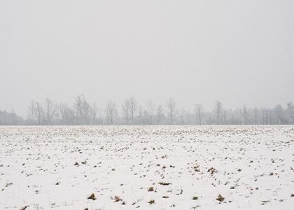 Snowy field under gray skies