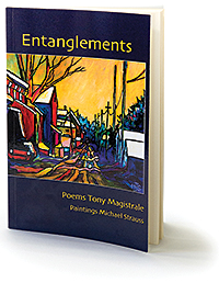 Entanglements book