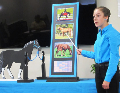 Kassidy points to display piece of horse photos and model