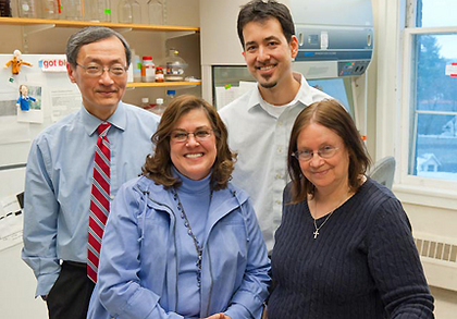 Victor May and Karen Braas (left), professors of anatomy and neurobiology, and Jom Hammack and Donna Toufexis, psychology,