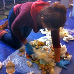 Greening of Aiken student intern sorts through Aiken trash.