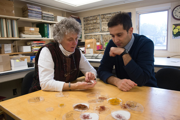 Margaret Skinner, research professor of plant and soil science, and Arash Ghalehgolabbehbahani, a visiting doctoral candidate from Iran.