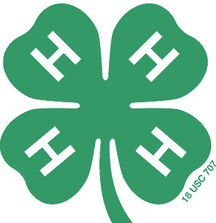green four leaf 4-H clover