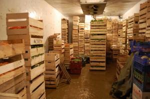cold storage for vegetables
