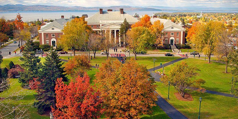 Photo of foliage on UVM's Main Green