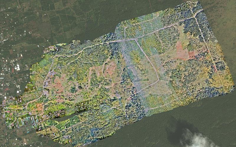 map of coffee plantation in Hawaii