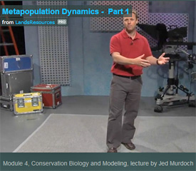 Screenshot of Jed Murdoch giving an online lecture in Conservation Biology and Modeling