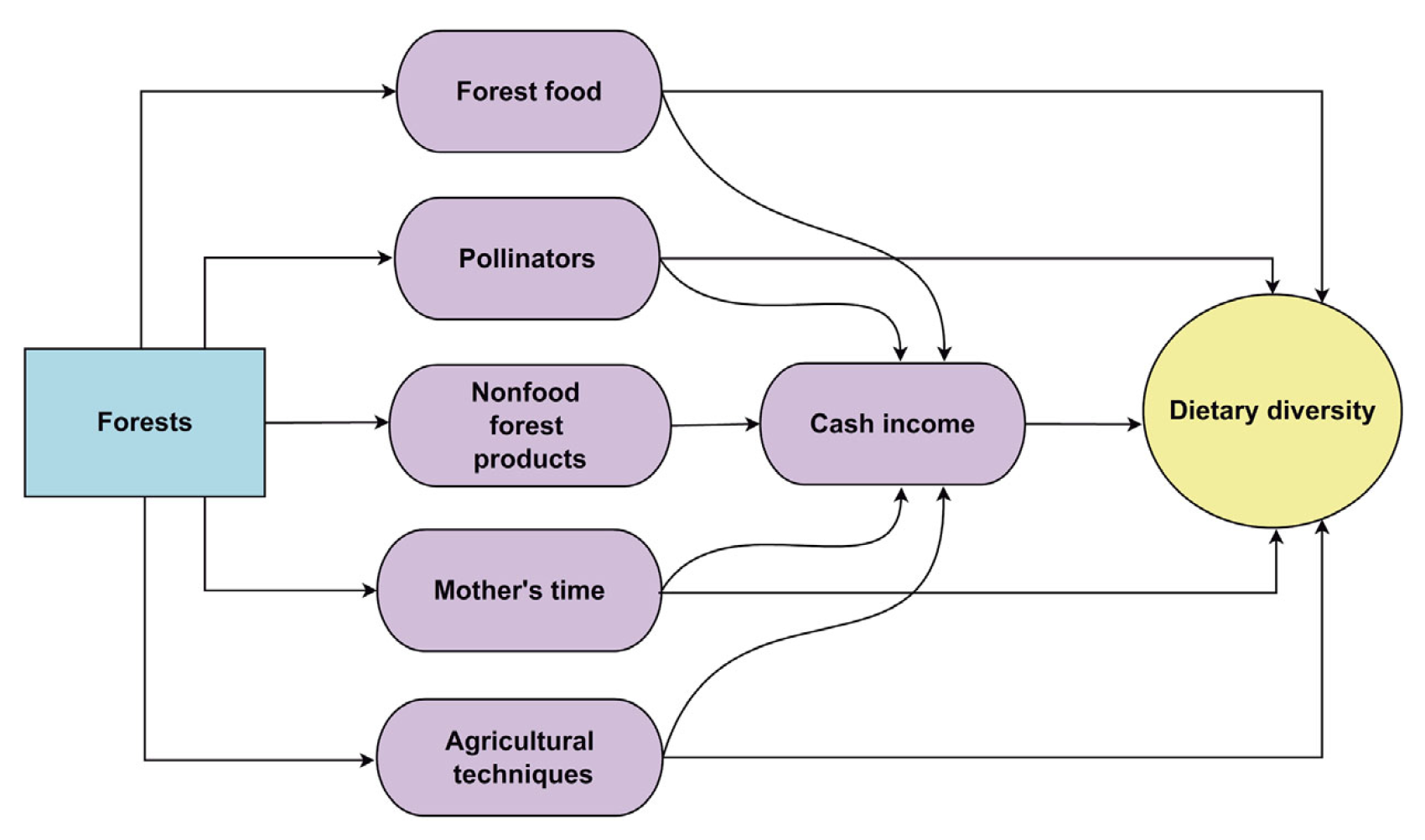Chart showing benefits of forest conservation as they flow toward  increased dietary diversity for children in the developing world;  published in Science Advances.