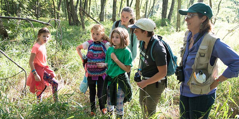 Students from JJ Flynn Elementary School and the University of Vermont discover a spider tending its web at the Winooski Valley Park District's Derway Island Nature Preserve in Burlington, Vermont.