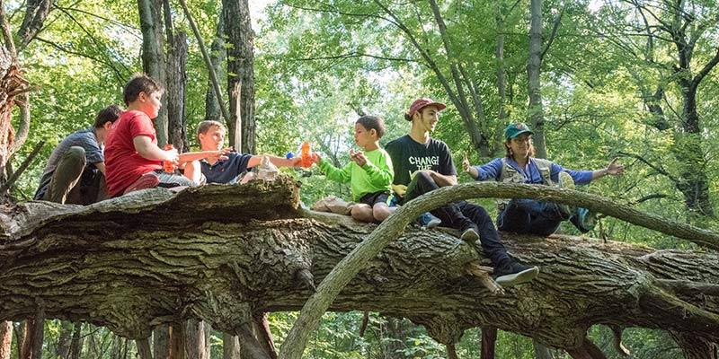Having a snack on a toppled tree within the Derway Island Nature Preserve: JJ Flynn Elementary School students, UVM undergrads and, far right, UVM professor of environmental studies Trish O'Kane.