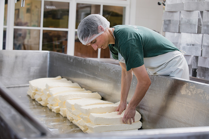 Jack Duncan making cheese, leaning over a cheese tank at Shelburne Farms.