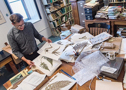 Michael Sundue looking at fern specimens in the Pringle Herbarium